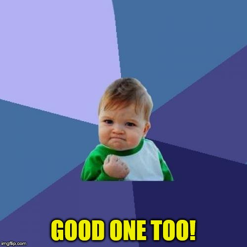 Success Kid Meme | GOOD ONE TOO! | image tagged in memes,success kid | made w/ Imgflip meme maker
