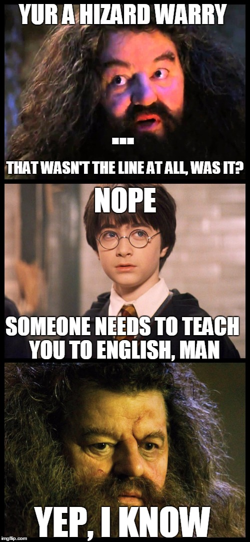 Yur a Hizard Warry | YUR A HIZARD WARRY ... THAT WASN'T THE LINE AT ALL, WAS IT? NOPE SOMEONE NEEDS TO TEACH YOU TO ENGLISH, MAN YEP, I KNOW | image tagged in harry potter,idiotic,bad grammar guy | made w/ Imgflip meme maker