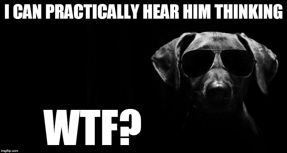I CAN PRACTICALLY HEAR HIM THINKING WTF? | made w/ Imgflip meme maker