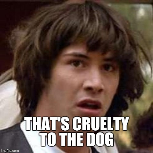 Conspiracy Keanu Meme | THAT'S CRUELTY TO THE DOG | image tagged in memes,conspiracy keanu | made w/ Imgflip meme maker