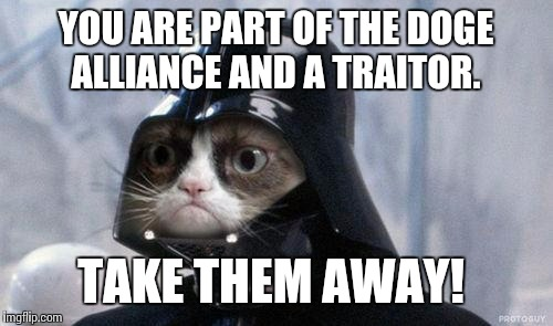 Grumpy Cat Star Wars | YOU ARE PART OF THE DOGE ALLIANCE AND A TRAITOR. TAKE THEM AWAY! | image tagged in memes,grumpy cat star wars,grumpy cat | made w/ Imgflip meme maker
