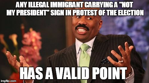 "An unintentional truth  | ANY ILLEGAL IMMIGRANT CARRYING A ""NOT MY PRESIDENT"" SIGN IN PROTEST OF THE ELECTION HAS A VALID POINT 