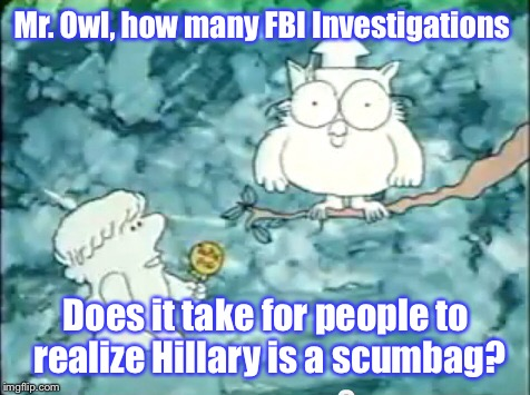 Um....1...2...3...4...5...6..7................... | Mr. Owl, how many FBI Investigations Does it take for people to realize Hillary is a scumbag? | image tagged in memes,hillary clinton,fbi investigation,tootsie pop owl | made w/ Imgflip meme maker