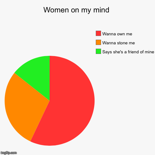 Women on my mind | Says she's a friend of mine , Wanna stone me, Wanna own me | image tagged in funny,pie charts | made w/ Imgflip pie chart maker