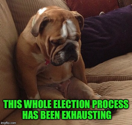 THIS WHOLE ELECTION PROCESS HAS BEEN EXHAUSTING | made w/ Imgflip meme maker