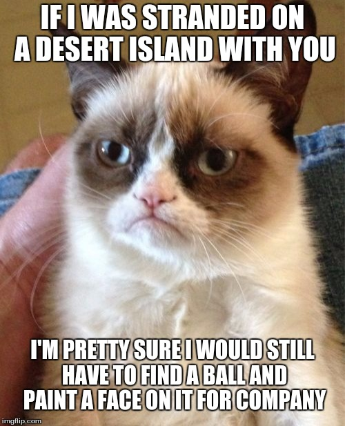 Grumpy Cat Meme | IF I WAS STRANDED ON A DESERT ISLAND WITH YOU I'M PRETTY SURE I WOULD STILL HAVE TO FIND A BALL AND PAINT A FACE ON IT FOR COMPANY | image tagged in memes,grumpy cat | made w/ Imgflip meme maker
