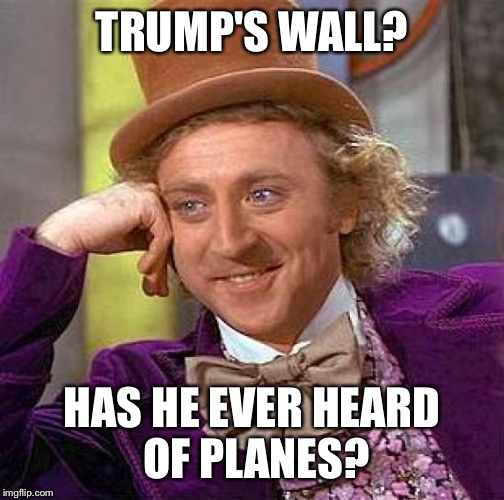 Creepy Condescending Wonka Meme | TRUMP'S WALL? HAS HE EVER HEARD OF PLANES? | image tagged in memes,creepy condescending wonka | made w/ Imgflip meme maker