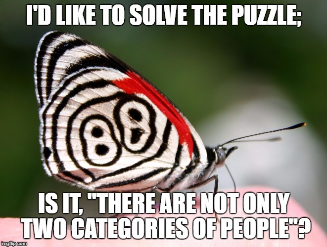 "self-determination | I'D LIKE TO SOLVE THE PUZZLE; IS IT, ""THERE ARE NOT ONLY TWO CATEGORIES OF PEOPLE""? 