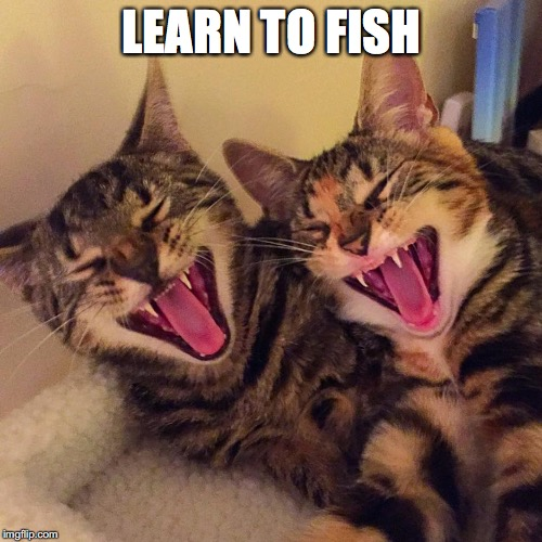 LEARN TO FISH | made w/ Imgflip meme maker