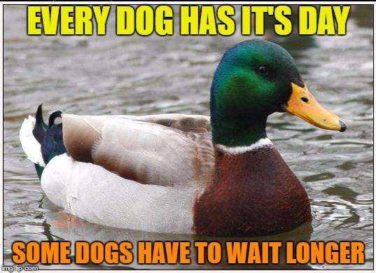 EVERY DOG HAS IT'S DAY SOME DOGS HAVE TO WAIT LONGER | made w/ Imgflip meme maker