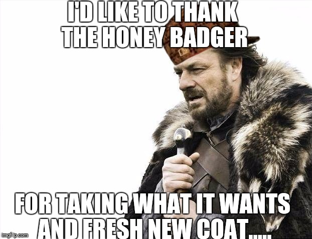 Brace Yourselves X is Coming Meme | I'D LIKE TO THANK THE HONEY BADGER FOR TAKING WHAT IT WANTS AND FRESH NEW COAT..... | image tagged in memes,brace yourselves x is coming,scumbag | made w/ Imgflip meme maker