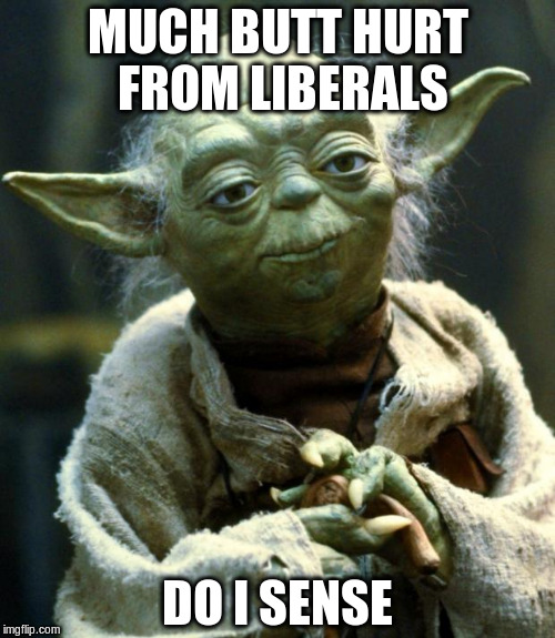 Star Wars Yoda Meme |  MUCH BUTT HURT FROM LIBERALS; DO I SENSE | image tagged in memes,star wars yoda | made w/ Imgflip meme maker