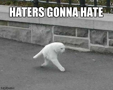 Funny Cat Meme Generator : Image tagged in halfcat funny cats haters gonna hate imgflip