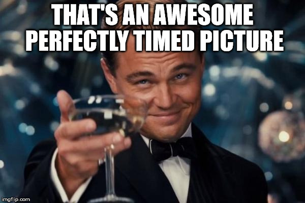 Leonardo Dicaprio Cheers Meme | THAT'S AN AWESOME PERFECTLY TIMED PICTURE | image tagged in memes,leonardo dicaprio cheers | made w/ Imgflip meme maker