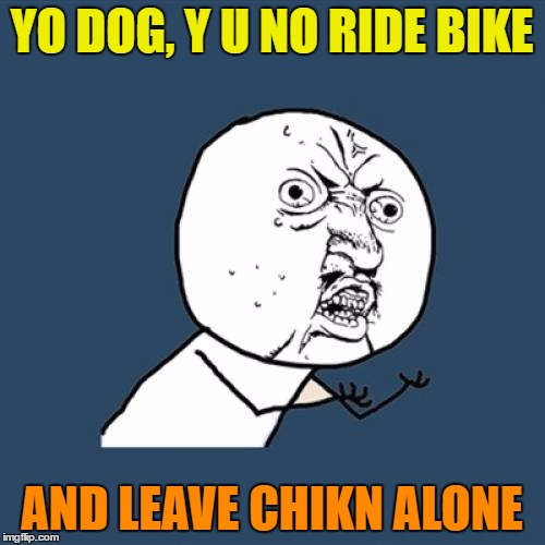 Y U No Meme | YO DOG, Y U NO RIDE BIKE AND LEAVE CHIKN ALONE | image tagged in memes,y u no | made w/ Imgflip meme maker