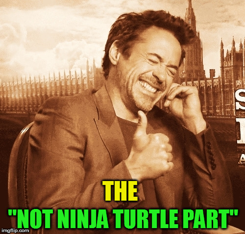 "laughing | THE ""NOT NINJA TURTLE PART"" 