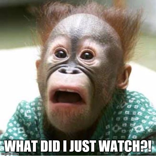 Scared Monkey | WHAT DID I JUST WATCH?! | image tagged in scared monkey | made w/ Imgflip meme maker