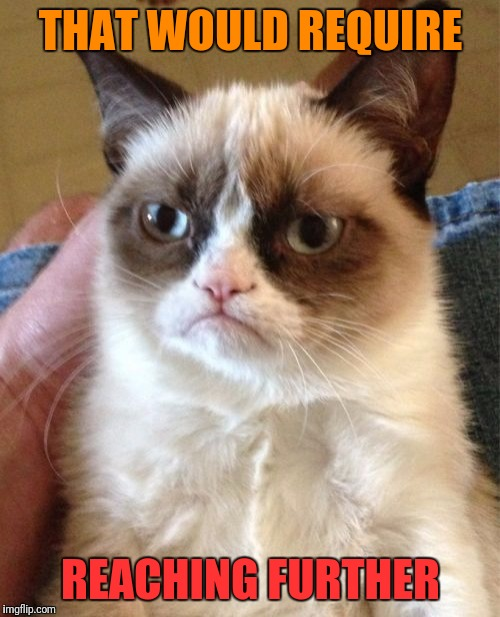 Grumpy Cat Meme | THAT WOULD REQUIRE REACHING FURTHER | image tagged in memes,grumpy cat | made w/ Imgflip meme maker