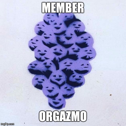Member Berries |  MEMBER; ORGAZMO | image tagged in member berries | made w/ Imgflip meme maker