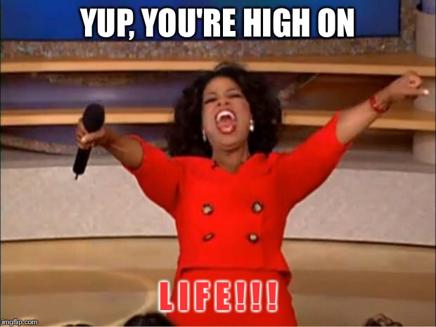 Oprah You Get A Meme | YUP, YOU'RE HIGH ON L I F E ! ! ! | image tagged in memes,oprah you get a | made w/ Imgflip meme maker