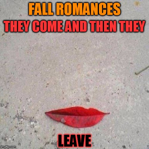 You may fall from the sky, you may fall from a tree, now I understand why you leave me! |  THEY COME AND THEN THEY; FALL ROMANCES; LEAVE | image tagged in fall romances,funny memes,leaf,autumn,fall,romance | made w/ Imgflip meme maker