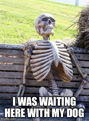 Waiting Skeleton Meme | I WAS WAITING HERE WITH MY DOG | image tagged in memes,waiting skeleton | made w/ Imgflip meme maker