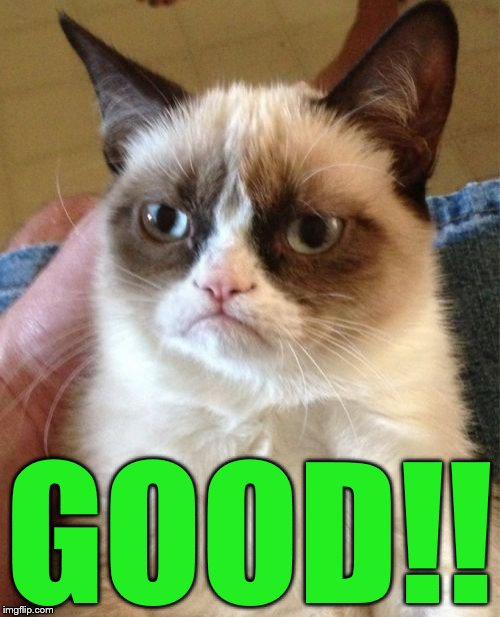 Grumpy Cat Meme | GOOD!! | image tagged in memes,grumpy cat | made w/ Imgflip meme maker