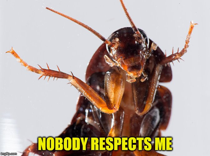 NOBODY RESPECTS ME | made w/ Imgflip meme maker