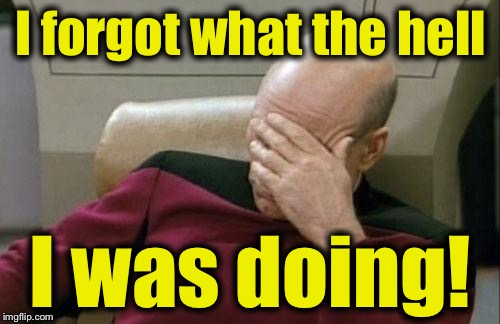 Captain Picard Facepalm Meme | I forgot what the hell I was doing! | image tagged in memes,captain picard facepalm | made w/ Imgflip meme maker
