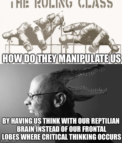How Do They... | HOW DO THEY MANIPULATE US BY HAVING US THINK WITH OUR REPTILIAN BRAIN INSTEAD OF OUR FRONTAL LOBES WHERE CRITICAL THINKING OCCURS | image tagged in manipulation,reptilian,illuminati,deep state,propaganda,critical thinking | made w/ Imgflip meme maker