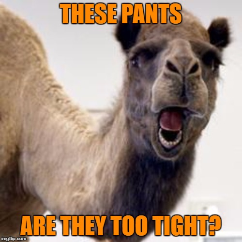 THESE PANTS ARE THEY TOO TIGHT? | made w/ Imgflip meme maker
