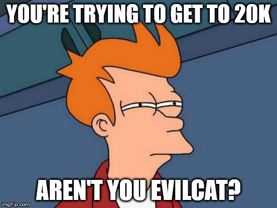 Futurama Fry Meme | YOU'RE TRYING TO GET TO 20K AREN'T YOU EVILCAT? | image tagged in memes,futurama fry | made w/ Imgflip meme maker