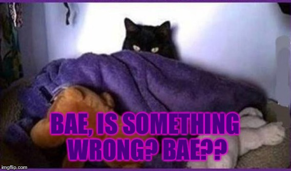 BAE, IS SOMETHING WRONG? BAE?? | made w/ Imgflip meme maker