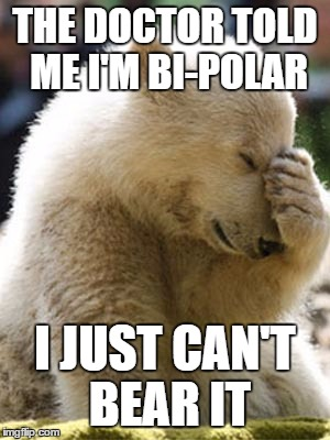 Facepalm Bear Meme | THE DOCTOR TOLD ME I'M BI-POLAR I JUST CAN'T BEAR IT | image tagged in memes,facepalm bear | made w/ Imgflip meme maker