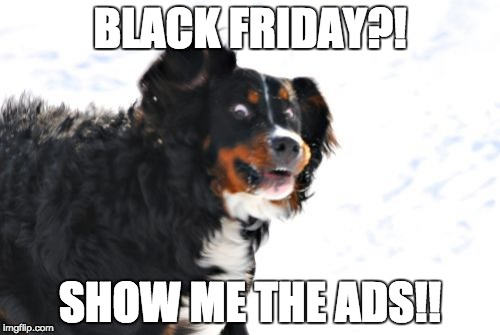 Crazy Dawg | BLACK FRIDAY?! SHOW ME THE ADS!! | image tagged in memes,crazy dawg | made w/ Imgflip meme maker