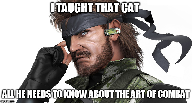 I TAUGHT THAT CAT ALL HE NEEDS TO KNOW ABOUT THE ART OF COMBAT | made w/ Imgflip meme maker