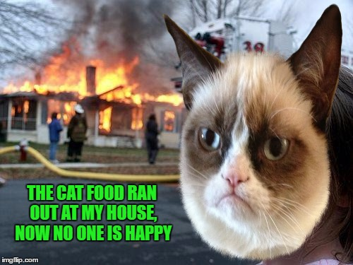 THE CAT FOOD RAN OUT AT MY HOUSE, NOW NO ONE IS HAPPY | made w/ Imgflip meme maker