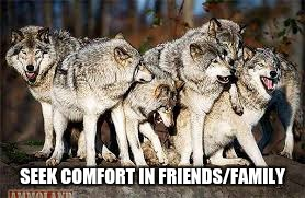 pack of wolves | SEEK COMFORT IN FRIENDS/FAMILY | image tagged in pack of wolves | made w/ Imgflip meme maker
