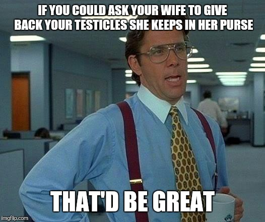 Hold my purse | IF YOU COULD ASK YOUR WIFE TO GIVE BACK YOUR TESTICLES SHE KEEPS IN HER PURSE THAT'D BE GREAT | image tagged in memes,that would be great | made w/ Imgflip meme maker