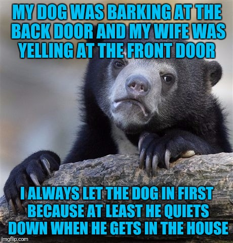 Confession Bear Meme | MY DOG WAS BARKING AT THE BACK DOOR AND MY WIFE WAS YELLING AT THE FRONT DOOR I ALWAYS LET THE DOG IN FIRST BECAUSE AT LEAST HE QUIETS DOWN  | image tagged in memes,confession bear | made w/ Imgflip meme maker
