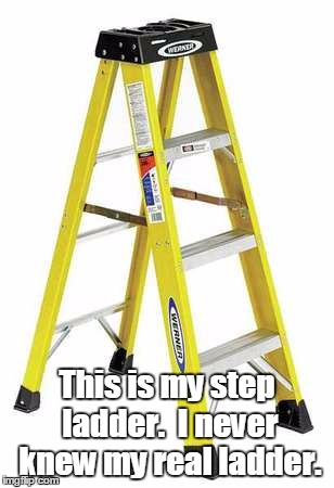 Whose your ladder? | This is my step ladder.I never knew my real ladder. | image tagged in meme,irony | made w/ Imgflip meme maker