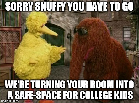Big Bird And Snuffy | SORRY SNUFFY YOU HAVE TO GO WE'RE TURNING YOUR ROOM INTO A SAFE-SPACE FOR COLLEGE KIDS | image tagged in memes,big bird and snuffy | made w/ Imgflip meme maker