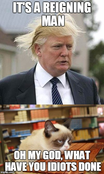 1emrrc image tagged in memes,grumpy cat,trump,song lyrics,grumpy cat