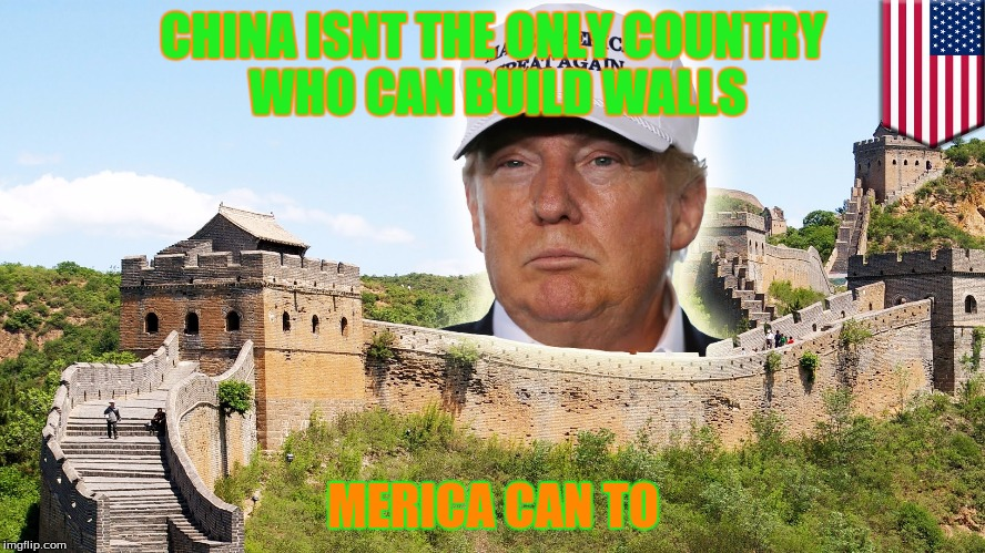 Trump | CHINA ISNT THE ONLY COUNTRY WHO CAN BUILD WALLS MERICA CAN TO | image tagged in donald trump | made w/ Imgflip meme maker