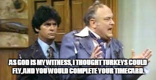 AS GOD IS MY WITNESS, I THOUGHT TURKEYS COULD FLY, AND YOU WOULD COMPLETE YOUR TIMECARD. | image tagged in wkrp | made w/ Imgflip meme maker