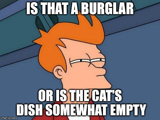 Futurama Fry Meme | IS THAT A BURGLAR OR IS THE CAT'S DISH SOMEWHAT EMPTY | image tagged in memes,futurama fry | made w/ Imgflip meme maker