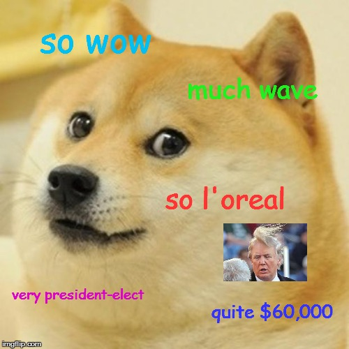 Doge |  so wow; much wave; so l'oreal; very president-elect; quite $60,000 | image tagged in memes,doge | made w/ Imgflip meme maker