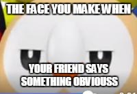 Rowlets Face XD | THE FACE YOU MAKE WHEN YOUR FRIEND SAYS SOMETHING OBVIOUSS | image tagged in pokemon,pokemon go,pokemon sun and moon,rowlet,meme,funny | made w/ Imgflip meme maker