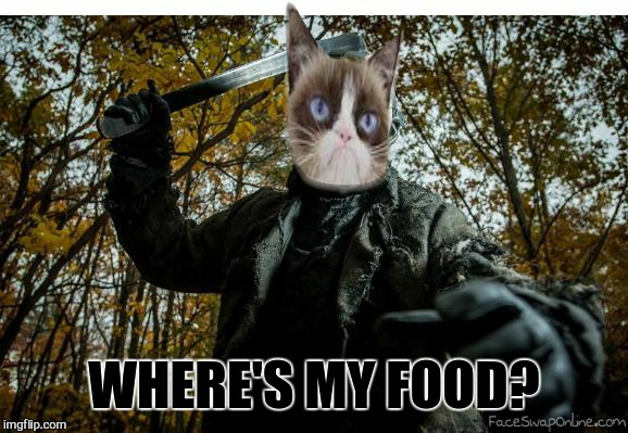 grumpy cat jason | WHERE'S MY FOOD? | image tagged in grumpy cat jason | made w/ Imgflip meme maker