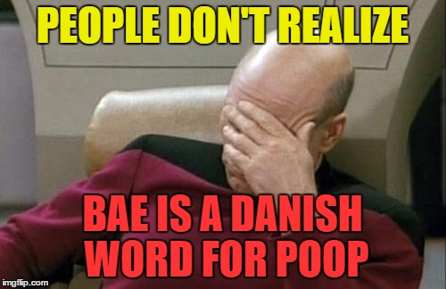 Captain Picard Facepalm Meme | PEOPLE DON'T REALIZE BAE IS A DANISH WORD FOR POOP | image tagged in memes,captain picard facepalm | made w/ Imgflip meme maker